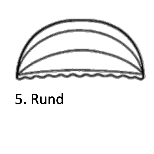 sienna5.png